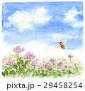 ミツバチ 蜂 レンゲ畑のイラスト 29458254