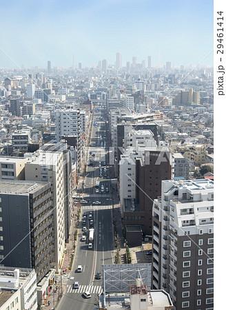 練馬区役所から見える目白通りから池袋までの風景(東京都練馬区・豊島区) 29461414