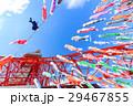 都市風景 東京タワーと快晴の空に泳ぐ鯉のぼり 29467855