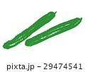 きゅうり 野菜 白バックのイラスト 29474541