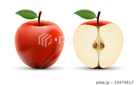Integer and cut apple isolated on white background 29479617