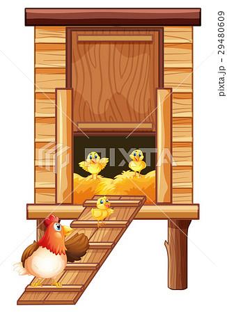 Chicken coop with hen and chicksのイラスト素材 [29480609] - PIXTA