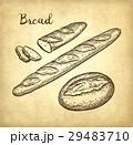 パン ブレッド 食のイラスト 29483710