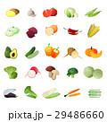 ベジタブル 野菜 トマトのイラスト 29486660
