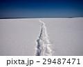 雪原 スノーシュー 足跡の写真 29487471