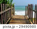 海 ビーチ 桟橋の写真 29490980