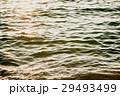 海 海面 水面の写真 29493499