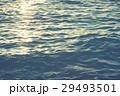 海 海面 水面の写真 29493501