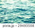 海 海面 水面の写真 29493508