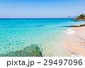 沖縄 ビーチ 海の写真 29497096