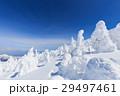 山形蔵王_快晴に輝く樹氷群 29497461