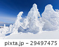 蔵王 樹氷 樹氷群の写真 29497475