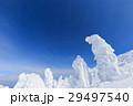 山形蔵王_快晴に輝く樹氷群 29497540