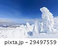 山形蔵王_快晴に輝く樹氷群 29497559