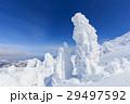 山形蔵王_快晴に輝く樹氷群 29497592