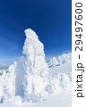 蔵王 樹氷 樹氷群の写真 29497600