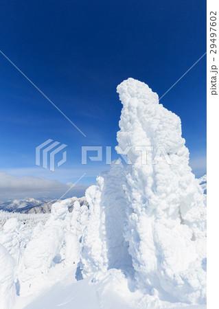 山形蔵王_快晴に輝く樹氷群 29497602
