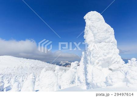 山形蔵王_快晴に輝く樹氷群 29497614