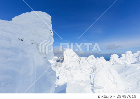 山形蔵王_快晴に輝く樹氷群 29497619