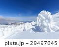 蔵王 樹氷 樹氷群の写真 29497645