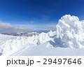 山形蔵王_快晴に輝く樹氷群 29497646