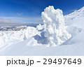 蔵王 樹氷 樹氷群の写真 29497649