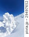蔵王 樹氷 樹氷群の写真 29497652