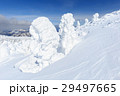 蔵王 樹氷 樹氷群の写真 29497665