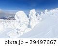 山形蔵王_快晴に輝く樹氷群 29497667