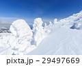 蔵王 樹氷 樹氷群の写真 29497669