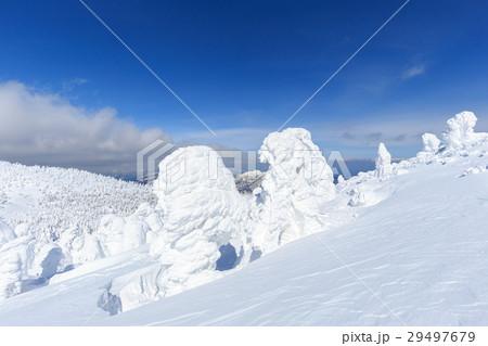 山形蔵王_快晴に輝く樹氷群 29497679