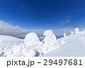 蔵王 樹氷 樹氷群の写真 29497681