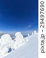 山形蔵王_快晴に輝く樹氷群 29497690