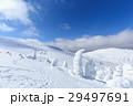 山形蔵王_快晴に輝く樹氷群 29497691