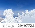 蔵王 樹氷 樹氷群の写真 29497728