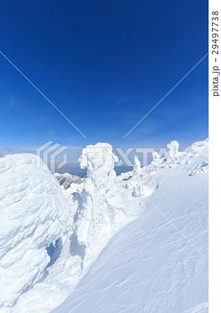 山形蔵王_快晴に輝く樹氷群 29497738