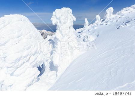 山形蔵王_快晴に輝く樹氷群 29497742