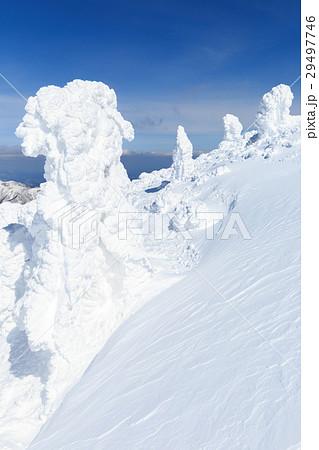 山形蔵王_快晴に輝く樹氷群 29497746
