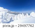 山形蔵王_快晴に輝く樹氷群 29497762