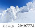 山形蔵王_快晴に輝く樹氷群 29497778