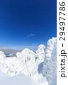 蔵王 樹氷 樹氷群の写真 29497786