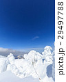 蔵王 樹氷 樹氷群の写真 29497788