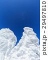 蔵王 樹氷 樹氷群の写真 29497810