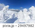 山形蔵王_快晴に輝く樹氷群 29497982