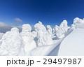 山形蔵王_快晴に輝く樹氷群 29497987