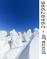 蔵王 樹氷 樹氷群の写真 29497996