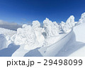 山形蔵王_最盛期の樹氷群 29498099