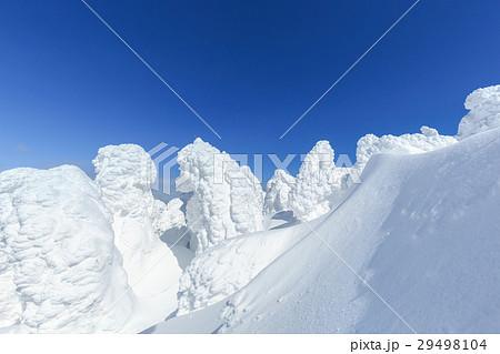 山形蔵王_最盛期の樹氷群 29498104