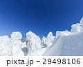 山形蔵王_最盛期の樹氷群 29498106
