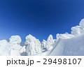山形蔵王_最盛期の樹氷群 29498107